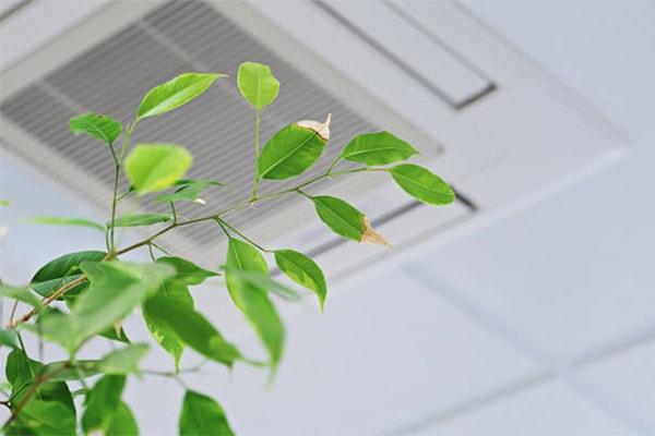 vvs nørrebro - ventilation sundt indeklima